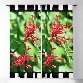 Jungle blossom Blackout Curtain