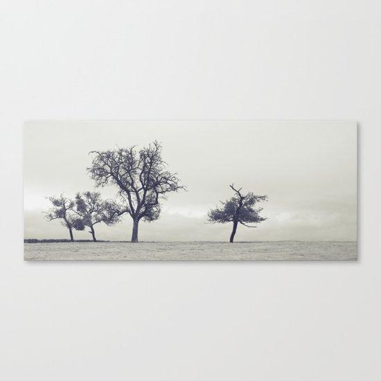 bleak trees... Canvas Print
