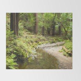 Muir Woods Creek Throw Blanket