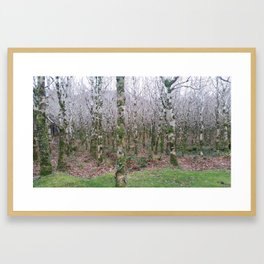 Kylemore Abby, Ireland Framed Art Print