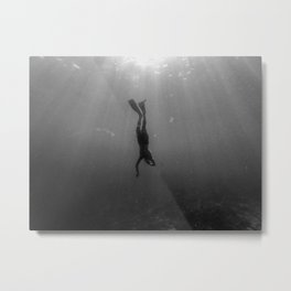 Diving Into The Unknown Metal Print