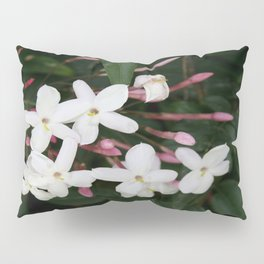 Delicate White Jasmine Blossom with Green Background Pillow Sham