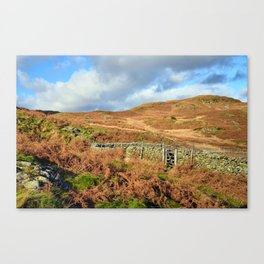 Open the gate to the fells Canvas Print