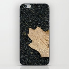 Autumn Leaf With Raindrops iPhone Skin