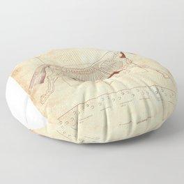Da Vinci Horse: The Trot Revealed Floor Pillow