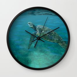 Sea Turtle with Posse Wall Clock