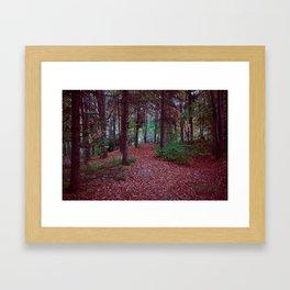 Birdland Framed Art Print