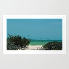 Beauty of The Gulf Art Print