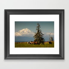 Horses and Mount Redoubt, Enroute to Homer, Alaska Framed Art Print