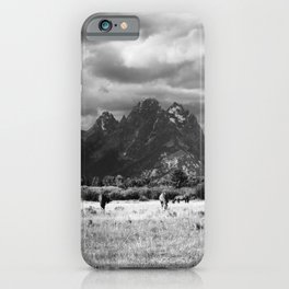 Horse and Grand Teton (Black and White) iPhone Case