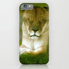 Lioness iPhone 6s Slim Case