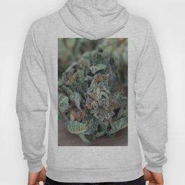 Master Kush Medical Marijuana Hoody