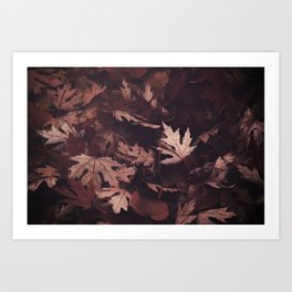 Timeless Season Art Print