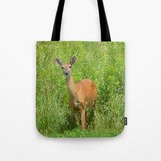 Deer on Edge of Field Tote Bag