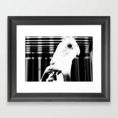 the parrot john Framed Art Print