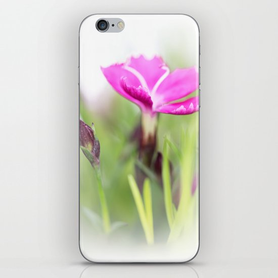 Lilac dream... so sweet... iPhone & iPod Skin
