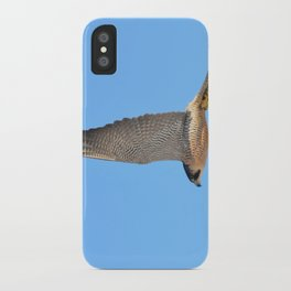 Peregrine Falcon Close Up 2 iPhone Case