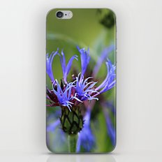 Touch of Purple iPhone & iPod Skin