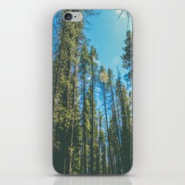 Follow the Forest iPhone Skin
