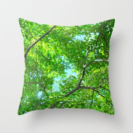Canopy of Green, Leafy Branches with Blue Sky Throw Pillow