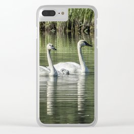 Family of Swans, No. 1 Clear iPhone Case