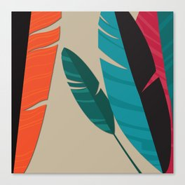 More Feathers Canvas Print