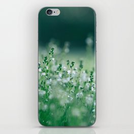 Misty view of dew on wild plants in the meadow iPhone Skin
