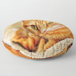 Cute red cat Floor Pillow