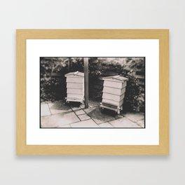 Pops' Bees Framed Art Print