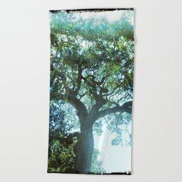 Ramona Oak Tree Beach Towel