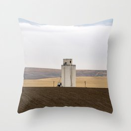 Stoic Pride Fends Off The Despair Throw Pillow