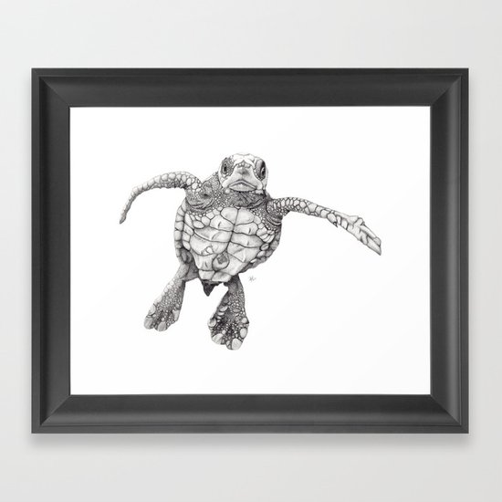 Chelonioidea (the turtle) Framed Art Print