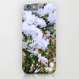 Snow on Evergreen Boughs iPhone Case