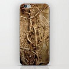 Life on Life iPhone & iPod Skin