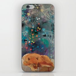 Feed Your Soul iPhone Skin