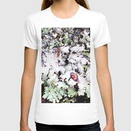 Hawaiian Lichen T-shirt