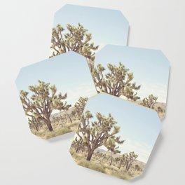 Pale Desert Coaster