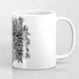 Fagus Sylvatico, beech Coffee Mug