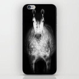 Horse in the dark iPhone Skin
