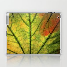 Fall Leaf II Laptop & iPad Skin