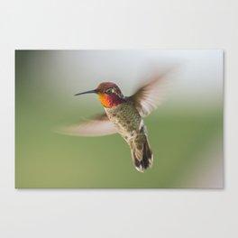 Aerial Maneuver Canvas Print