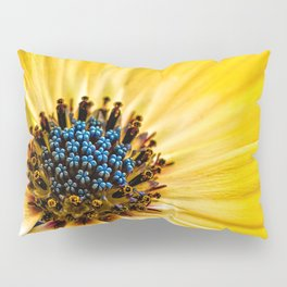 Osteospermum-'Buttermilk' Pillow Sham