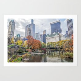 Central Park in Autumn Art Print