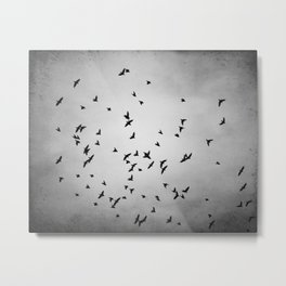 Black and White Birds Flying Photography, Grey Bird Fly Sky, Gray Neutral Nature Flock Photo Metal Print