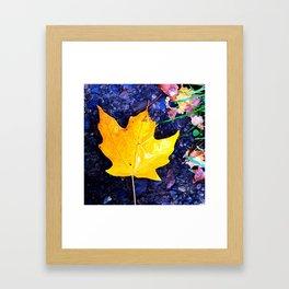 fallen yellow Framed Art Print