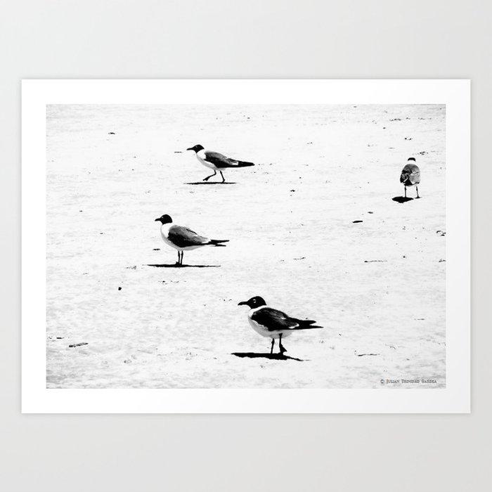 """Birds on South African Beach"" Art Print"