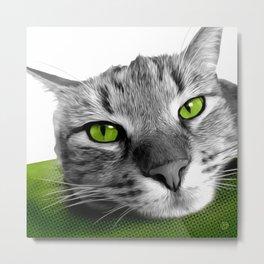 Green-Eyed Tabby Cat Metal Print