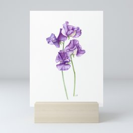 A Posy of Purple Sweet Peas Mini Art Print