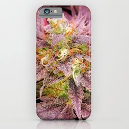 Passionately Purple iPhone Case