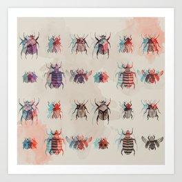 Beetles2 Art Print